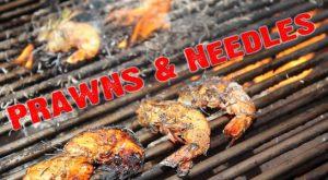 Shrimp and Pine Needles